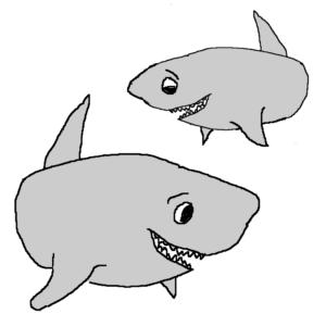 Sharks -- Illustration by Börkur Sigurbjörnsson