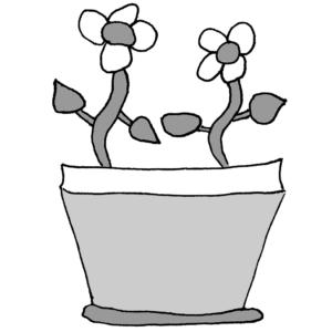 El jazmín - Ilustración de Börkur Sigurbjörnsson